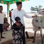 Sarhan Antili Serahkan Hewan Kurban Untuk Dhuafa