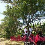 Dinilai Membahayakan, Ranting Pohon Sepanjang Jalur SBY Dipangkas