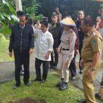 Ini Kata Jokowi di Hutan Kenangan Minut: Menanam Saat Hujan Sangat Bagus, Nanti Saya Akan Kembali Melihat Tanaman Ini