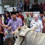 Wagub Kandouw serahkan Hewan Qurban dari Presiden Jokowi kepada Imam Masjid