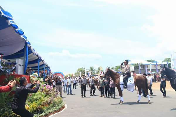 Atraksi Berkuda Kapolda Sulut.