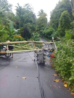 Tiang listrik tumbang di Kampung Miulu Kecamatan Tabukang Tengah akibat cuaca ekstrim pada Minggu (15/10/2017).