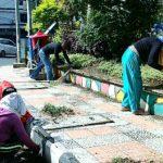 DLH Manado Rawat dan Percantik Taman di Pusat Kota