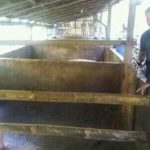 Terkait Kasus Pencurian Hewan Ternak Di Desa Lansot Tareran, Polisi Lakukan Olah TKP